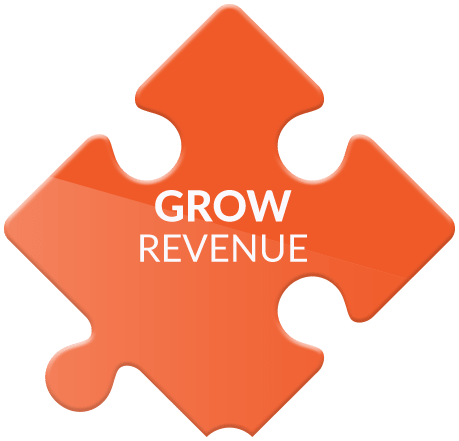We help you grow your revenue