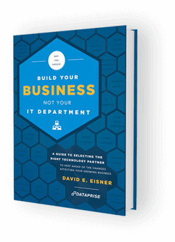Book cover of David Eisner's book, Build Your Business Not Your IT Department.