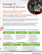 IT Consulting and Strategy Brochure