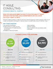IT Agile Consulting