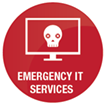 Emergency IT Sevices